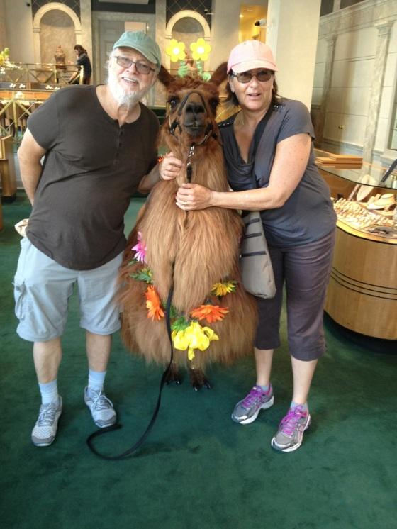 We followed a llama into a jewellery boutique